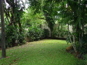 House For Rent: Big House near from Kemang Village Mall